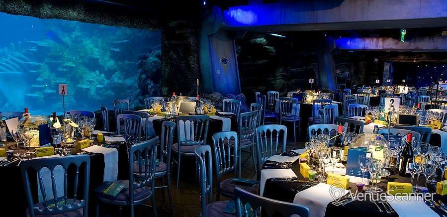 Hire Sea Life London Aquarium Atlantic Cove Venuescanner