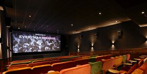 Everyman Cinema Horsham, Screen 1