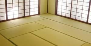 Tatami Health, Tatami