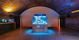 Dalston Fish Tank, Showroom