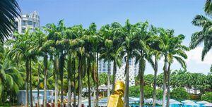 W Singapore Sentosa Cove, W Lawn