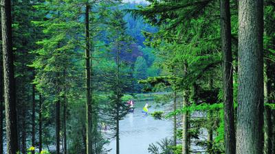 Center Parcs Longleat Forest, The Venue