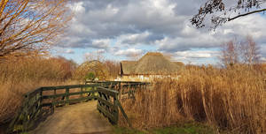 Wwt London Wetland Centre, Wetland Living (Outdoor)