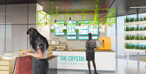 The Crystal, The Cafe