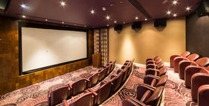 The Roseate Reading, Cinema
